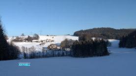 Feldkirch Partnersuche Senioren Waldhausen Im Strudengau
